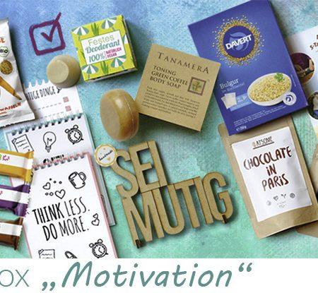 Review_Januar_Motivation