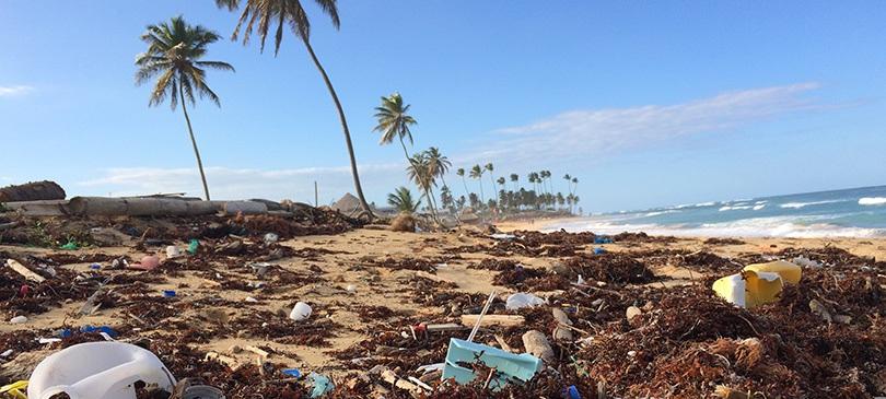 Plastik in der Umwelt