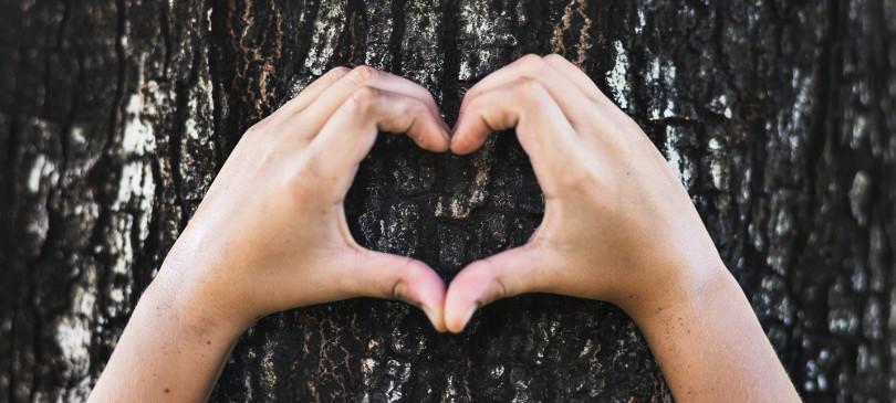 Valentinstag Einmal Nachhaltig Trendraider Nachhaltige Lifestyle