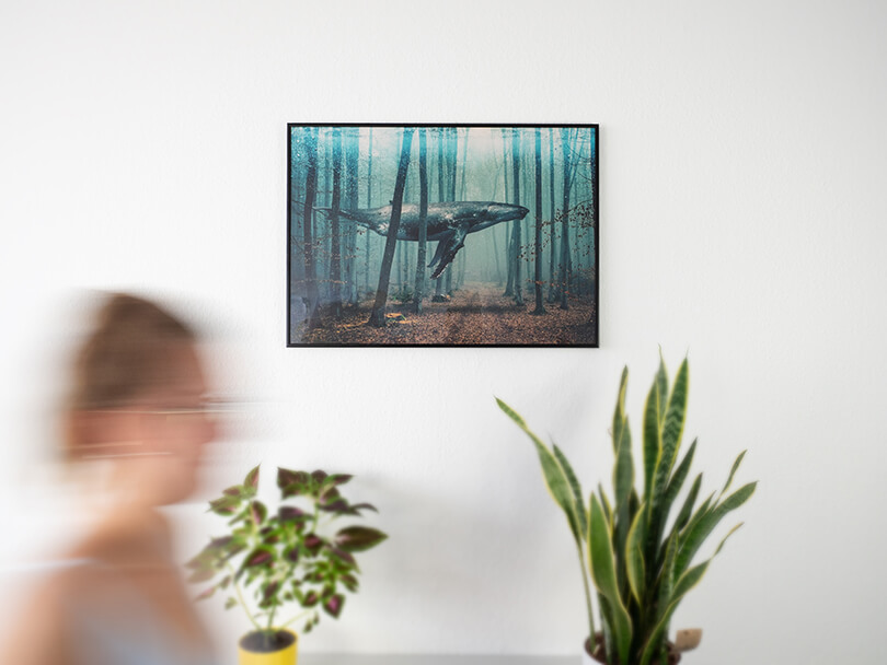 Desenio Poster Wal im Wald mit Rahmen