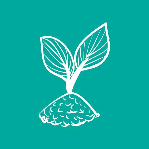 Nachhaltig schenken für unseren Planeten
