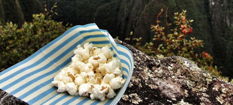 Wildwax Popcorn Machu Piccu