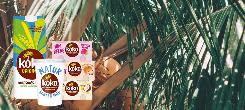 Vegane Milchalternativen Koko Dairy Free