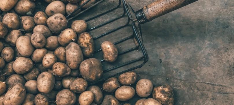 STYX Naturcosmetic Kartoffeln