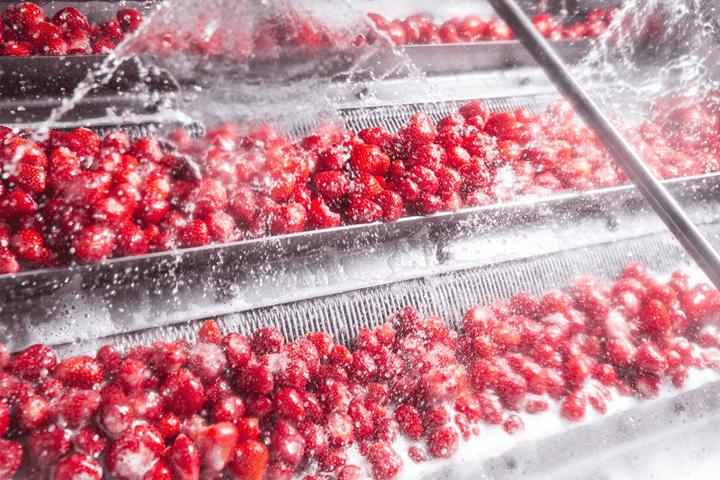 Schwartau Erdbeeren