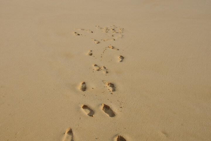 Callusan Fußpflege vegan
