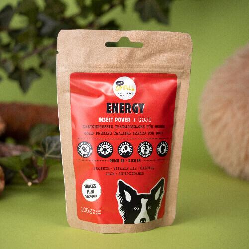Insekten Snack für Hunde