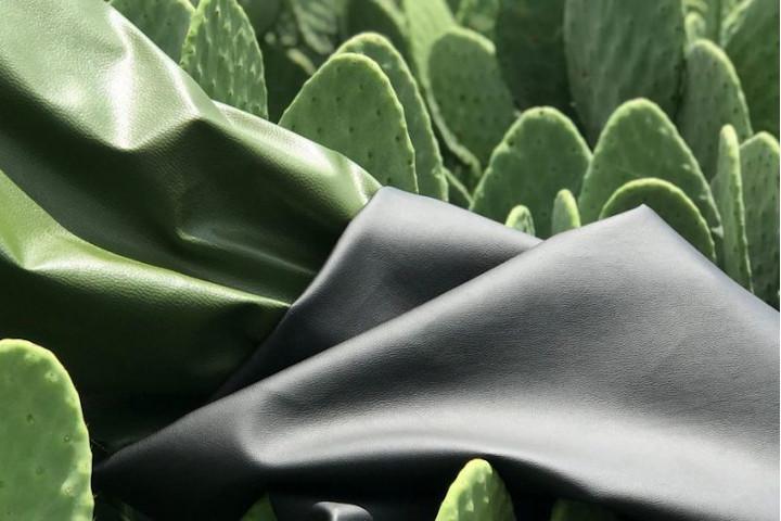 Ztudio 8b Kaktusleder
