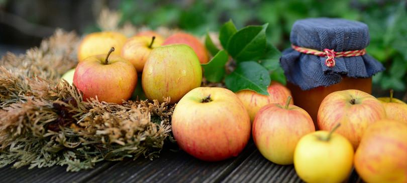 Obst haltbar machen